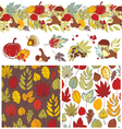autumn patterns and elements vector image