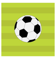 Football soccer ball on green grass field back vector image