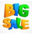 Big sale inscription vector image vector image