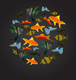 Colorful Aquarium Fishes isolated polygonal vector image