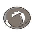 cute cat lying and sleeping vector image