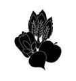 healthy vegetables symbol vector image