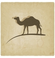 camel old background vector image