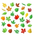 Autumn and summer leaves in flat style vector image vector image