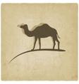 camel old background vector image