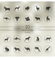 Set of mammals icons vector image