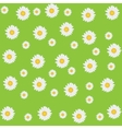Beautiful seamless daisy background vector image vector image