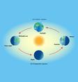 Season on planet earth vector image vector image