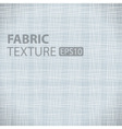 Fabric Texture vector image