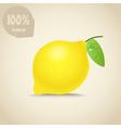 Cute fresh lemon vector image vector image