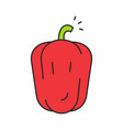 red pepper icon vector image