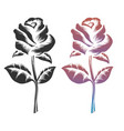 black and colorful roses vector image