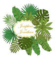 floral frame collection with tropical leafs in vector image