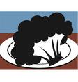 cauliflower vector image vector image