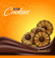 buttery cookies with chocolate on floral pattern vector image