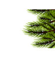 realistic isolated fir banner background vector image