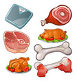 raw meat scales bones cooked pig and chicken vector image