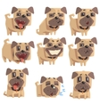 Little Pet Pug Dog Puppy With Collar Set Of Emoji vector image