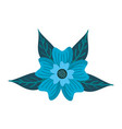 periwinkle flower adornment leaves foliage nature vector image