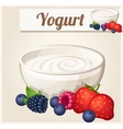 Yogurt with berries Detailed Icon vector image