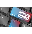 keyboard key with financial report button vector image