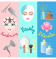 Accessories for Hairdressing salon Facials Beauty vector image