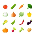 Vegetables Icons Flat vector image