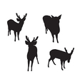 Deer Set Silhouettes on the white background vector image
