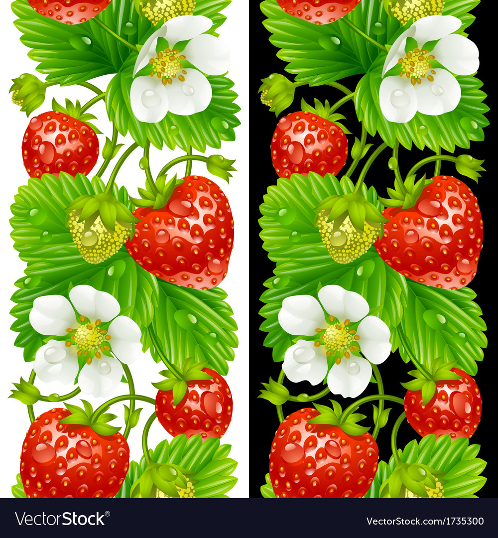 Strawberry seamless vertical pattern vector