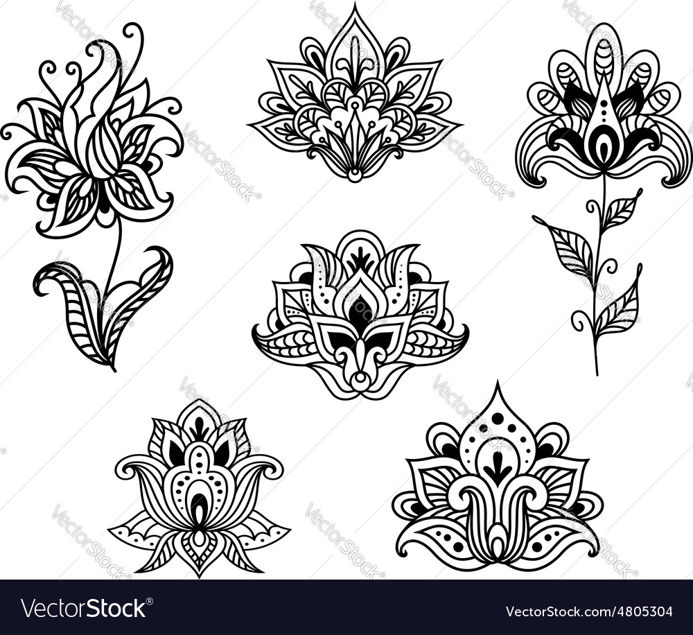 Outline floral paisley design elements vector