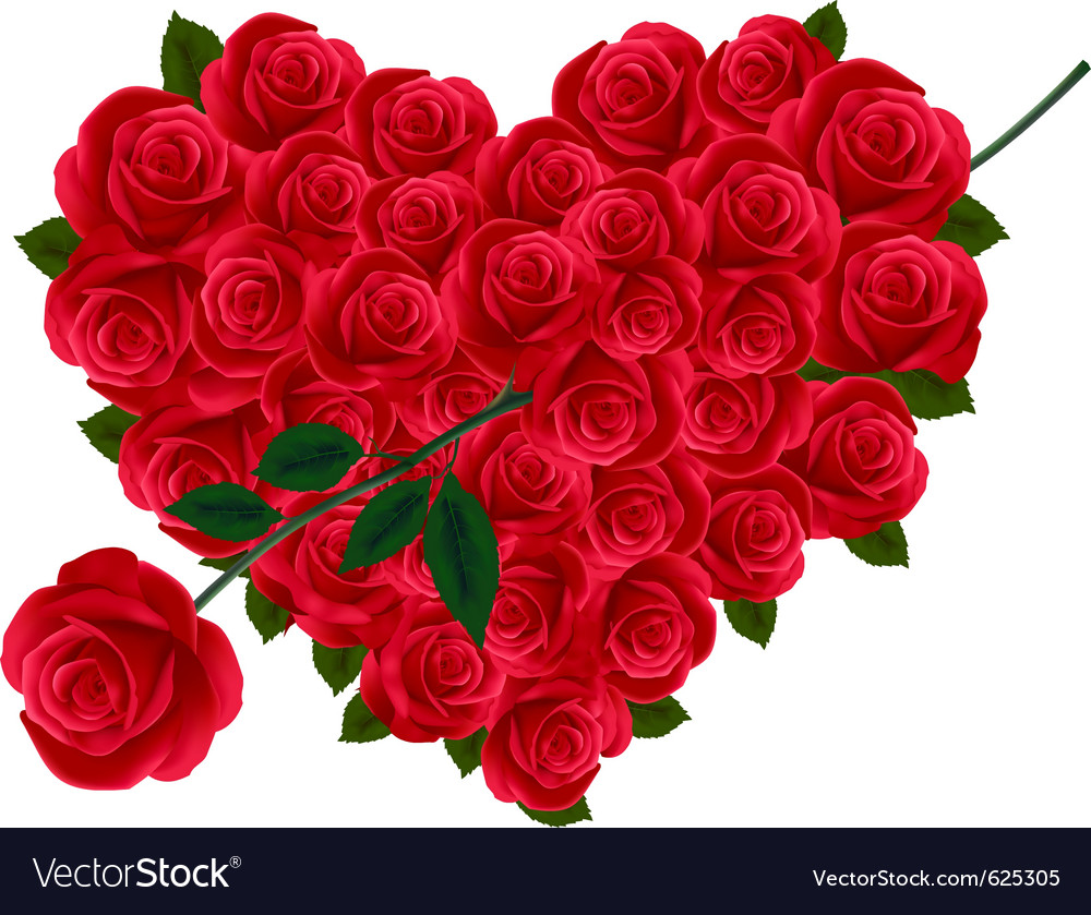 Valentine heart of roses vector