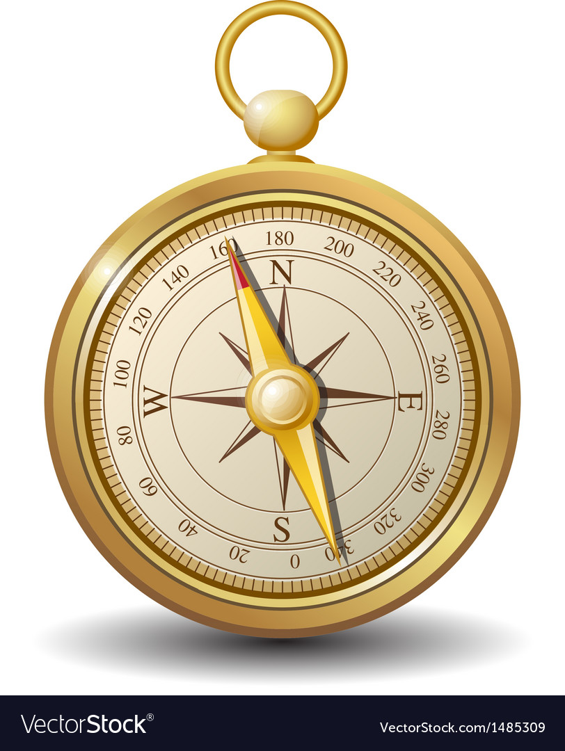 Gold compass vector