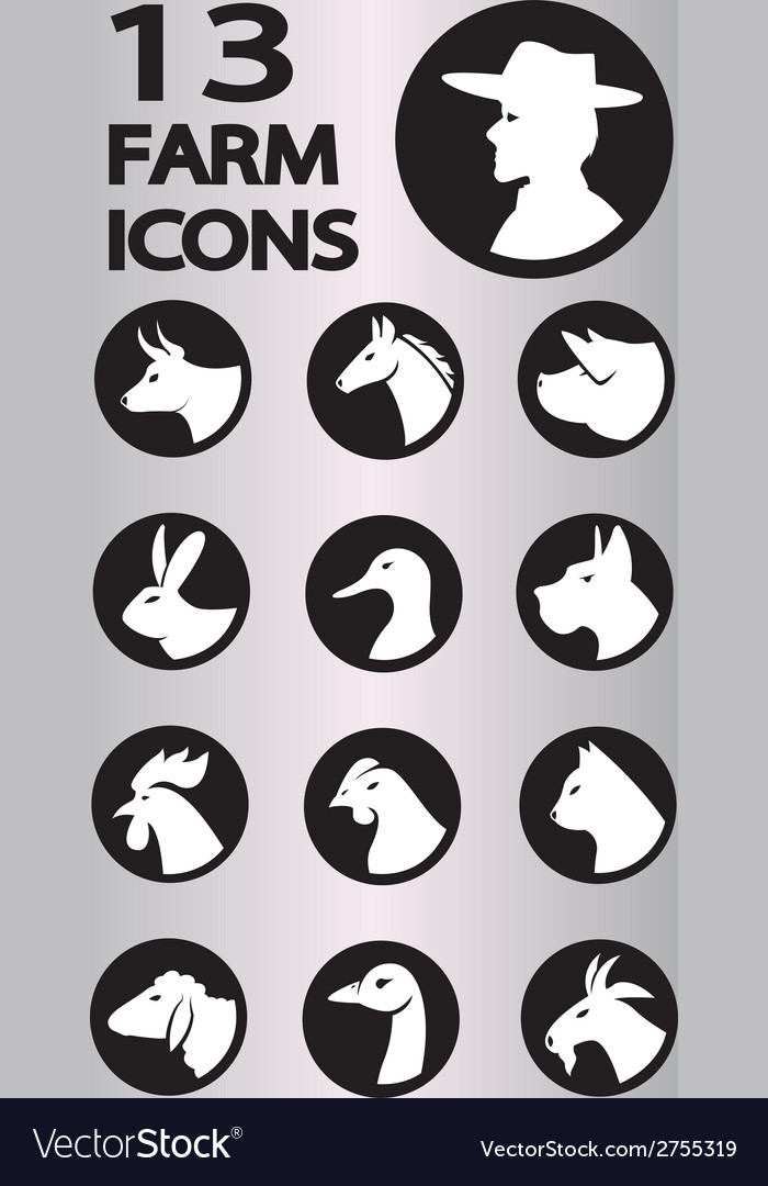 Icon animal3 vector