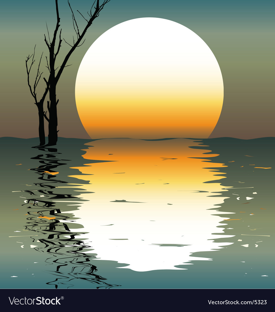 Night landscapes vector