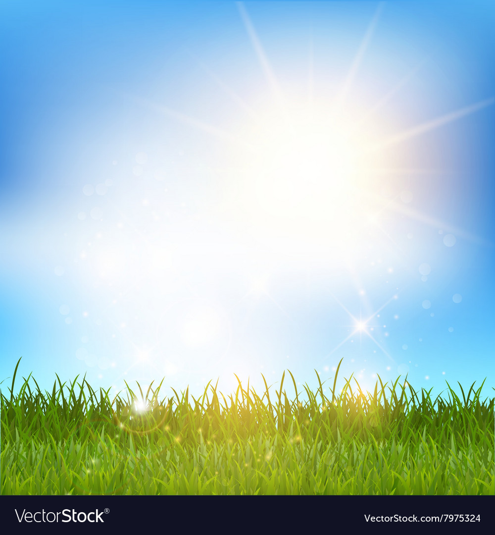 Blue sky and grass landscape 2001 vector