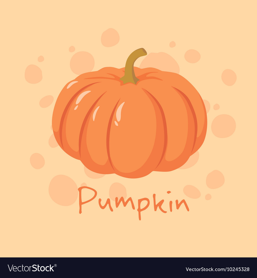 Pumpkin vegetable vector