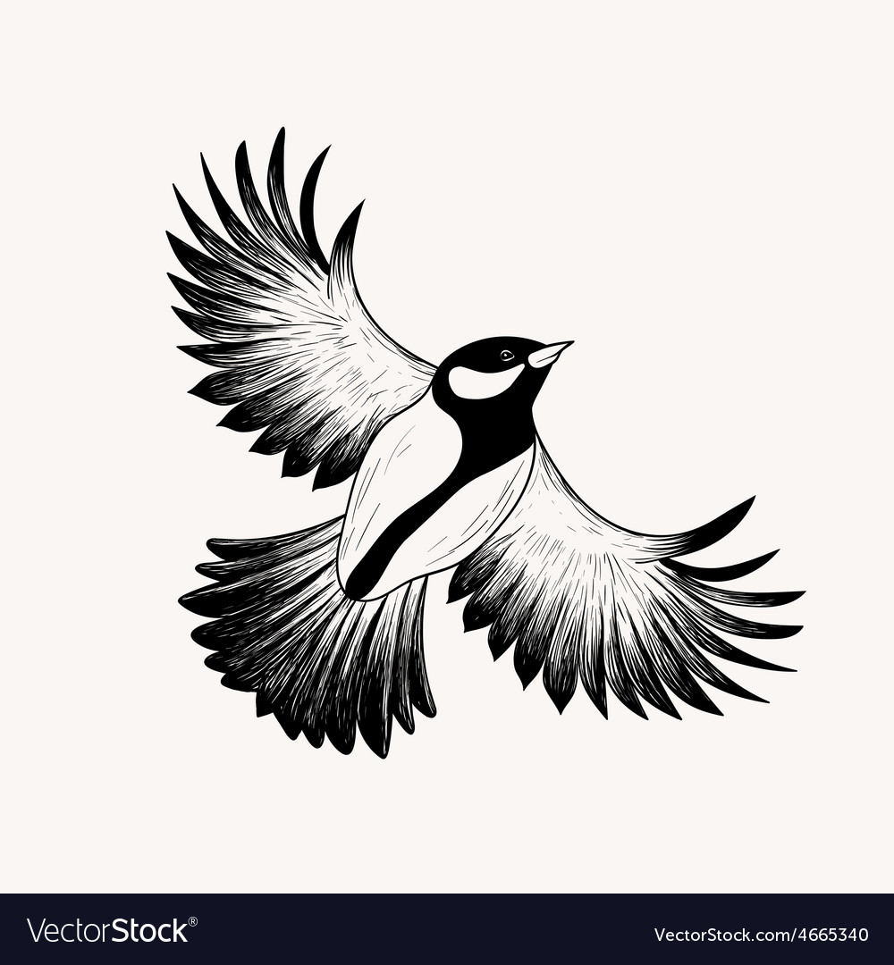 Sketch flying bird hand drawn isolated engraving vector
