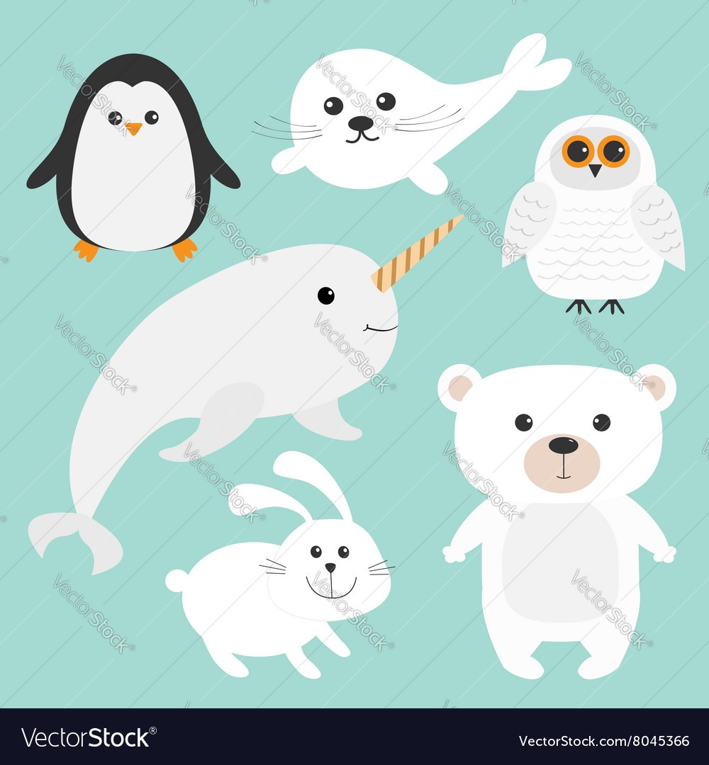 Arctic polar animal set white bear owl penguin vector