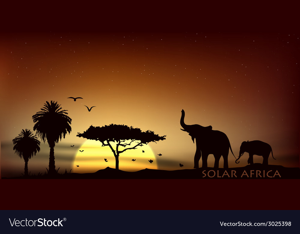 Sunrise over the savannah with african elephants vector