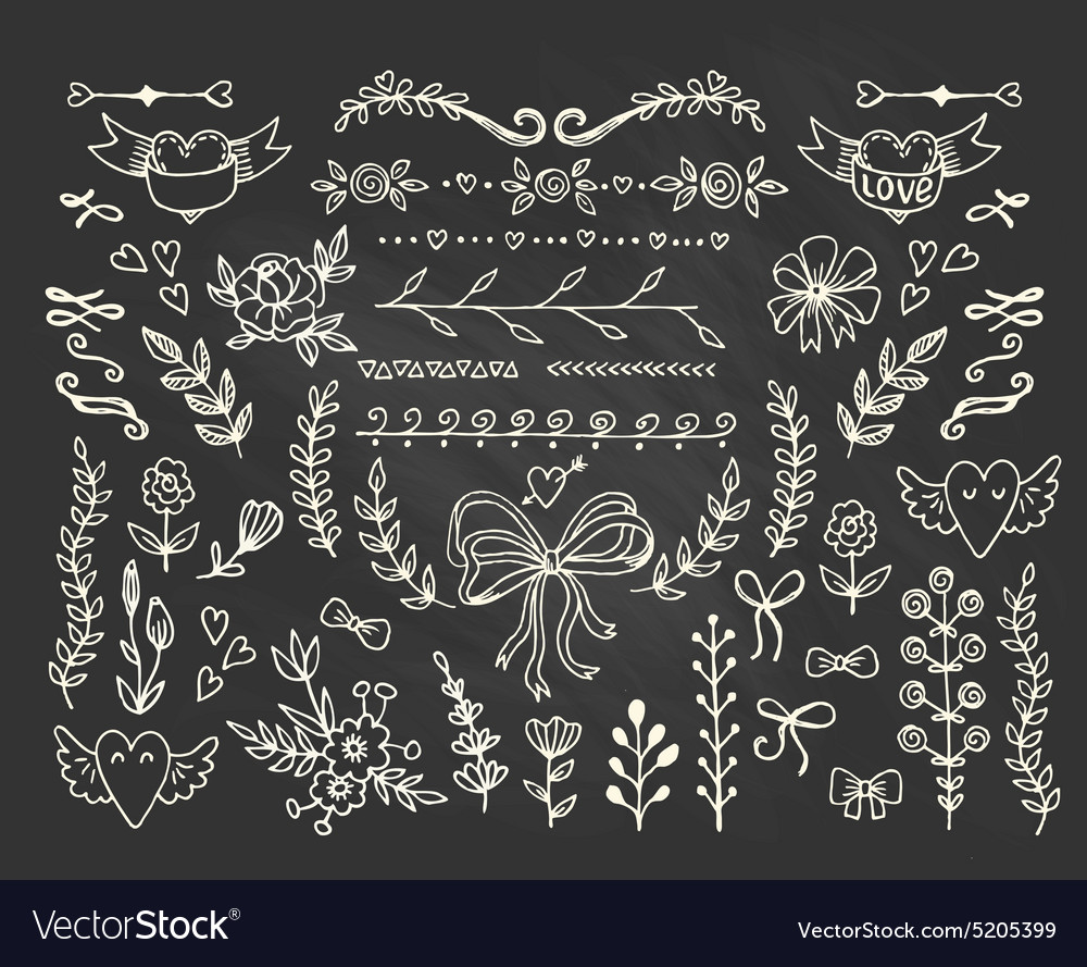 Set of floral handdrawn elements on the vector