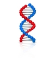 dna illustration vector image