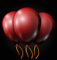 realistic red balloons with ribbon isolated vector image