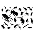 insects collection vector image vector image