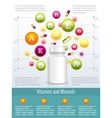 Vitamins and supplements infographics vector image