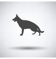 German shepherd icon vector image