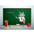 Cartoon cat in school vector image vector image