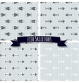 Set of Fish Skeleton Seamless Patterns vector image
