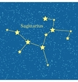 Night Sky with Sagittarius Constellation vector image