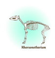prehistoric giraffe skeleton khersonotherium art vector image