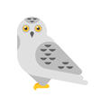 flat style of snowy white owl vector image